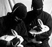 Programa del 19 de febrero de Rebelión Animal [Radio]